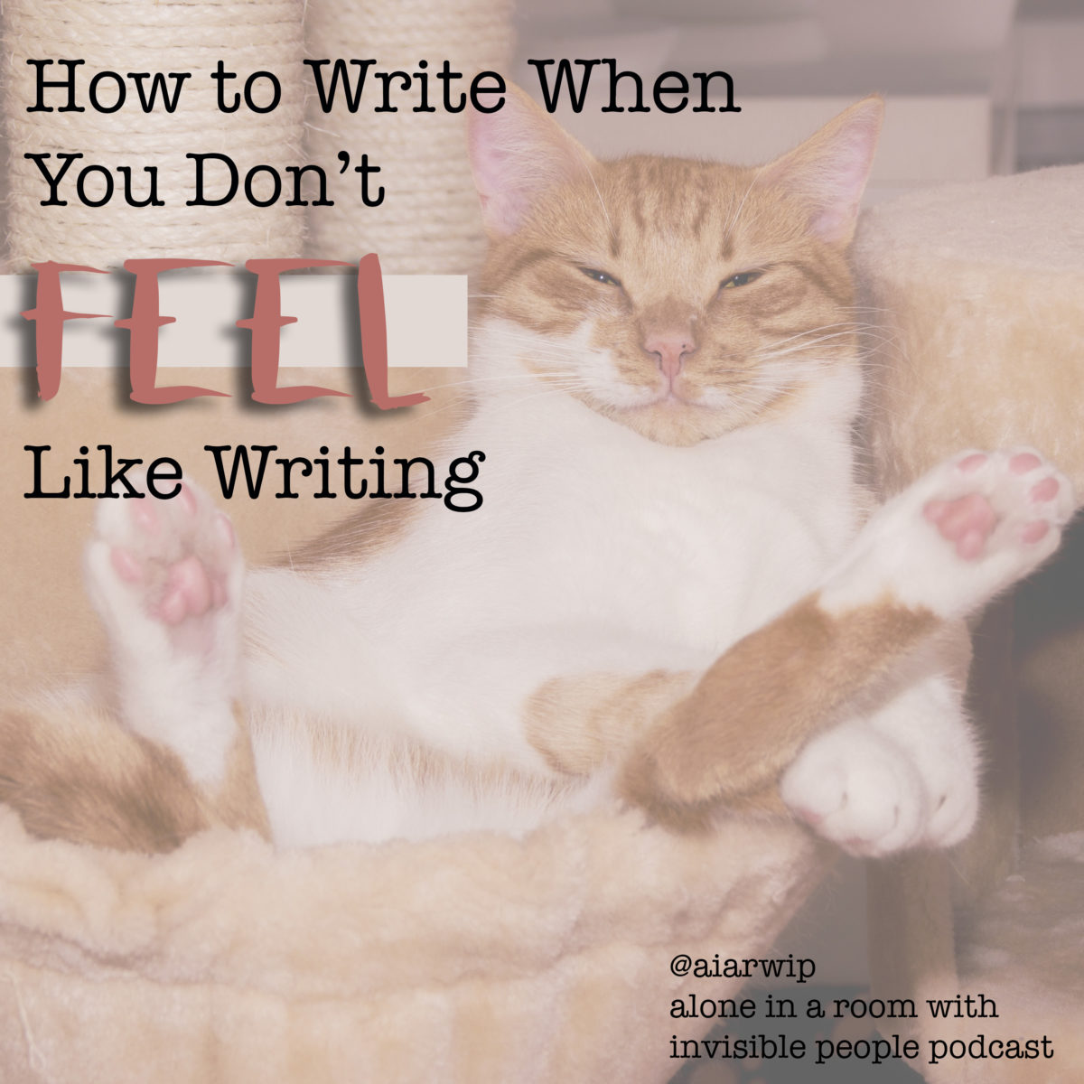 Episode 36: How to Write When You Don't Feel Like Writing