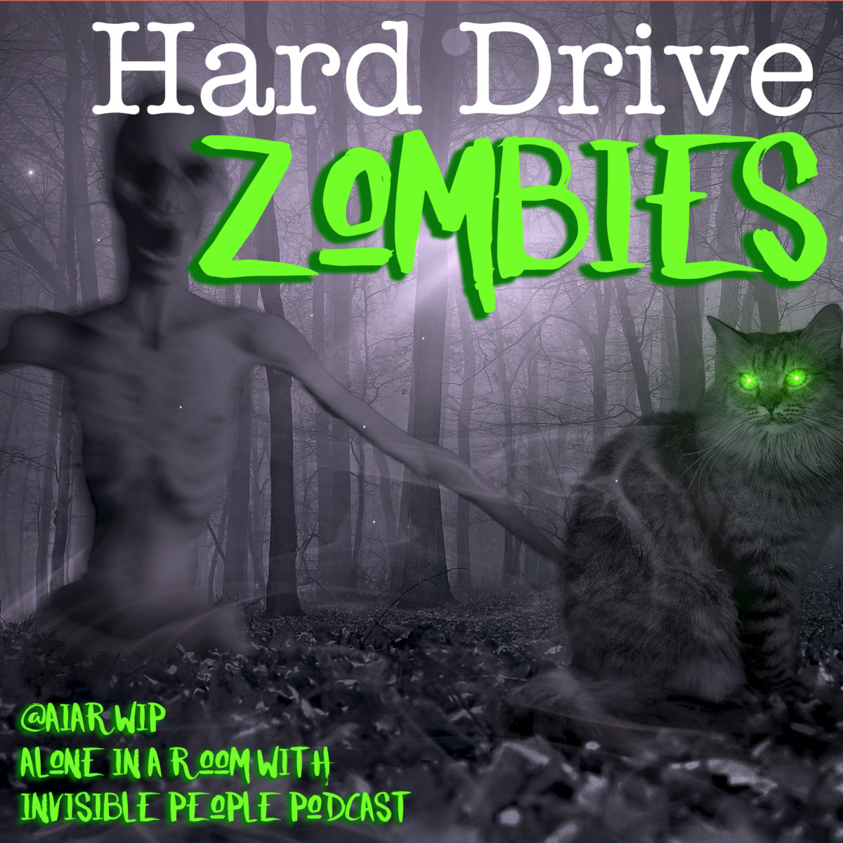 Episode 42: Hard Drive Zombies